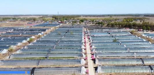 新华社视频丨丰南:农村粪污有归处 美了乡村肥了田