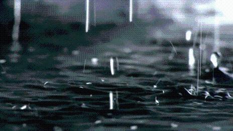 12345 热线周报发布:近期降雨引发的相关问题受关注