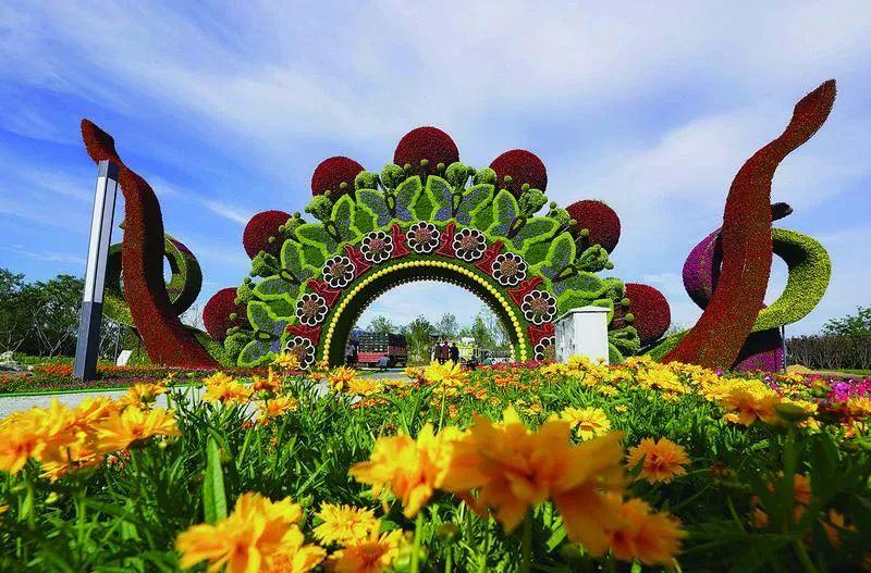 聚焦园博会丨花海看花!