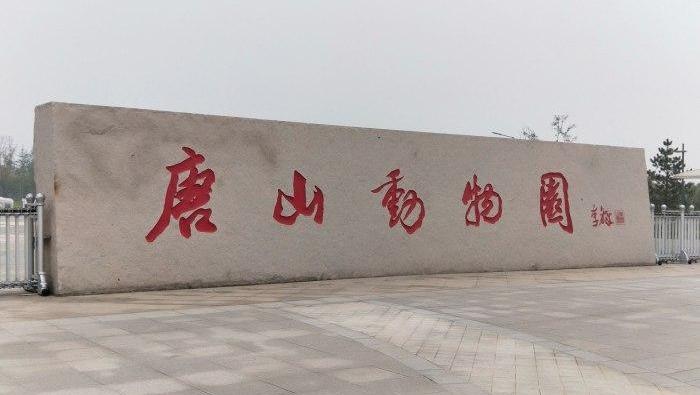 唐山动物园恢复开放